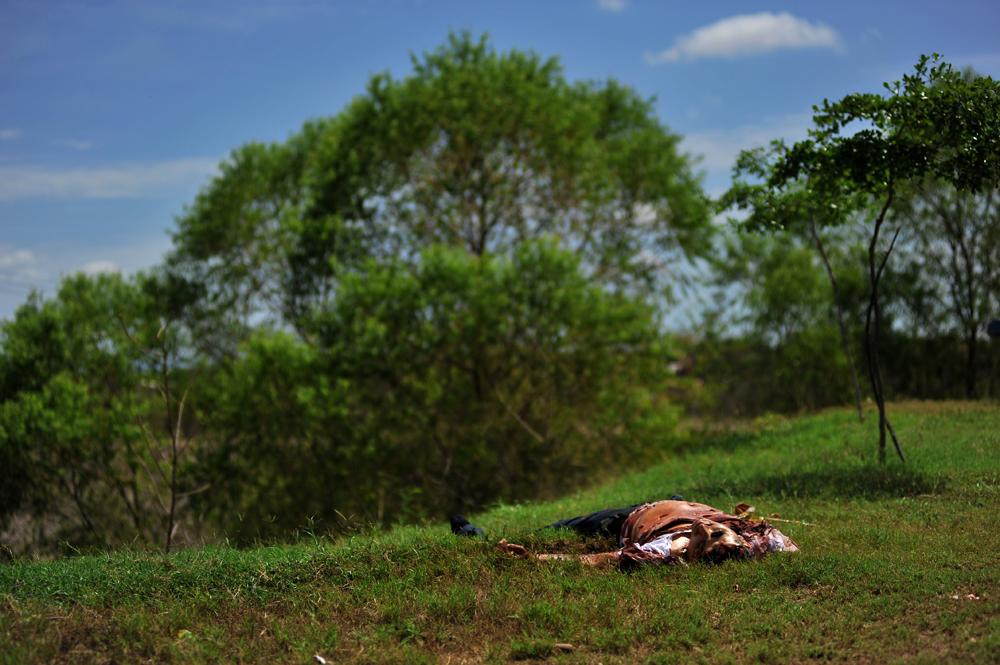 """Fernando Brito, de la serie """"Tus pasos se perdieron en el paisaje""""."""